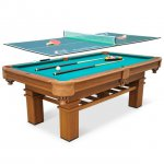 Ping Pong and Pool Table Combinations
